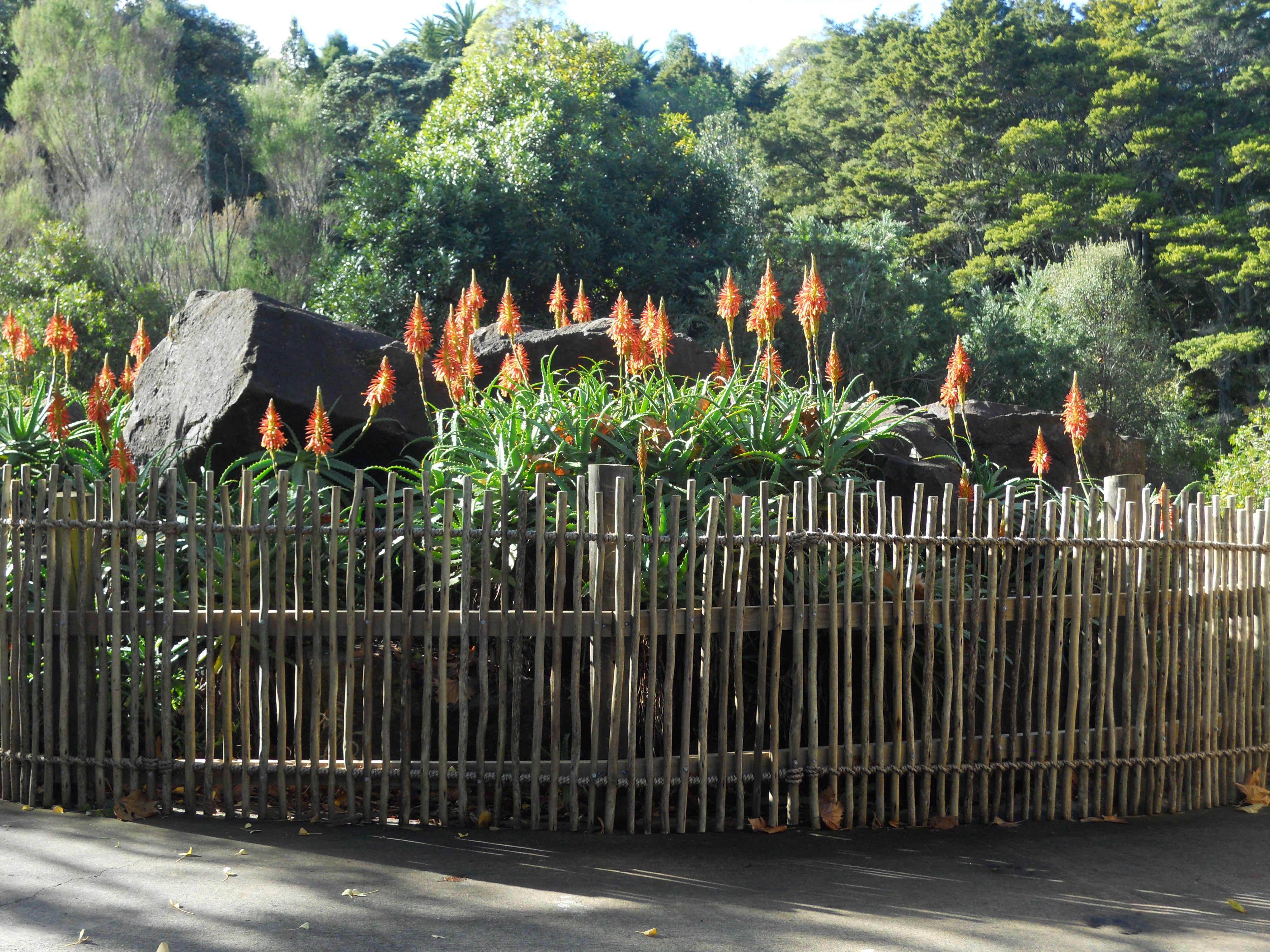 Rustic Eucalyptus Fencing from amaZulu Inc amaZulu