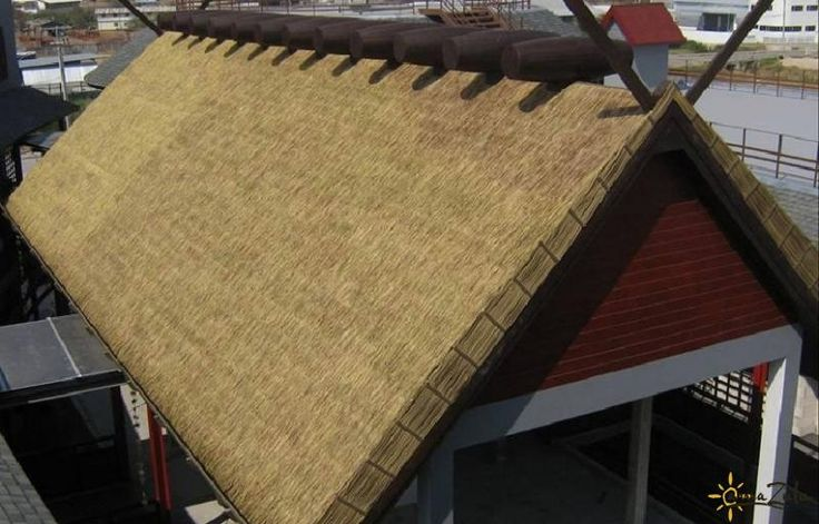 FAQs About Thatch