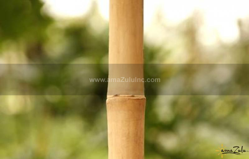 Solid bamboo poles