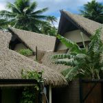 Synthetic Thatch or Natural Thatch