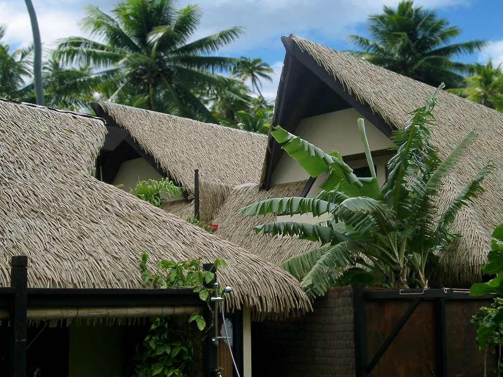 Synthetic Thatch Or Natural Thatch Understanding The