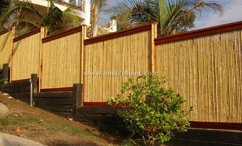 Natural Bamboo Screen