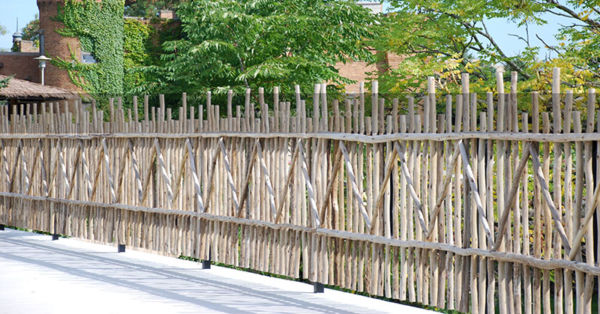 Tribal Eucalyptus Fencing