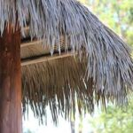 Cover Pic Viva Palm Thatch