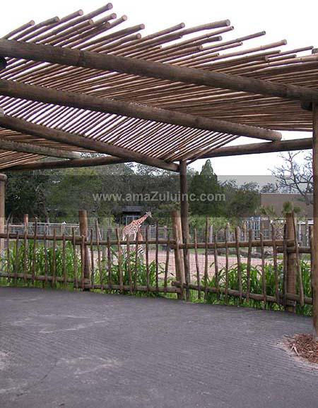 zoo exhibit outdoor viewing area